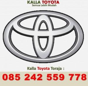 Sales Toyota TANA TORAJA